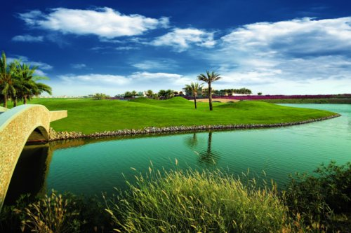 The Montgomerie D