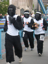 Charity Run