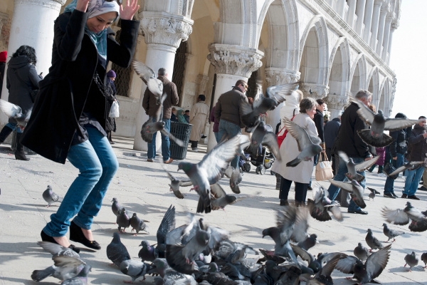 Woman and pigeons in Venice