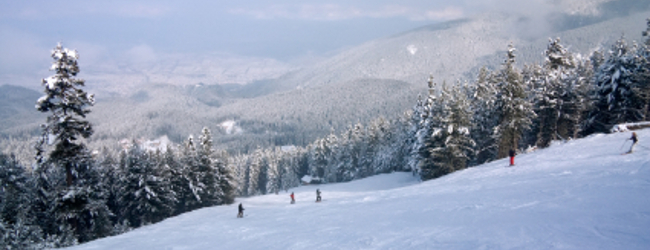 Career Break Gap Year Ski Resort Jobs Chalet Host
