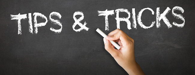 Home Travel Insurance Backpacker Insurance Career Gap Tips For ...