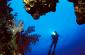 Top 10 International Diving Wreck Sites