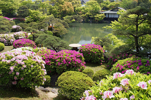 Kobe Flower Park