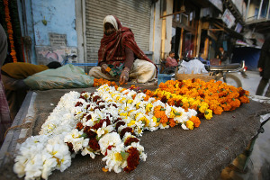 Flower Market in India