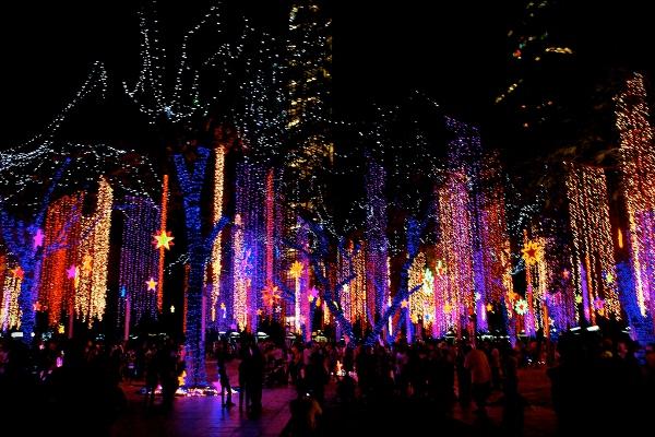 Lights & Sounds Show