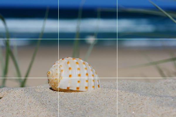 Apply the Rule of Thirds when composing your photo