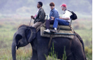 Top 10 World's Best Safaris
