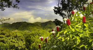 Eco-Destination Costa Rica