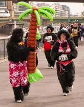 The Gorilla Run
