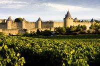 Carcasonne, South France
