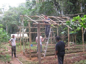 Gap year students farming