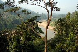 Taman Negara, Malaysia