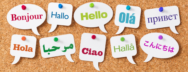 Learn a language abroad