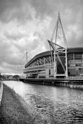 Millenium Rugby Stadium