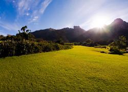 Kirstenbosch-Botanical Gardens