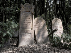 Tombstones at Old Jewish Cemetery