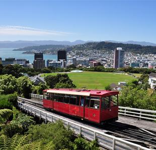 24 Hours in Wellington