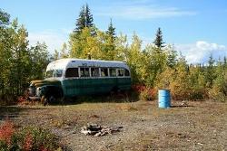 142 Bus