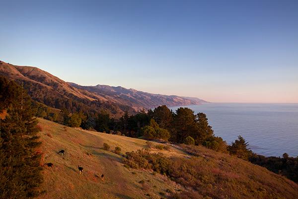 Pacific Coast of California