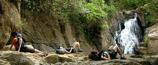 Explore the tropical rainforests