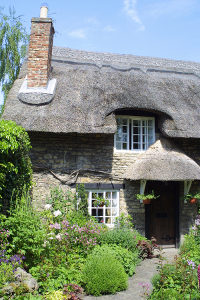 Cottage and countryside