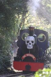 Exbury Ghost Train