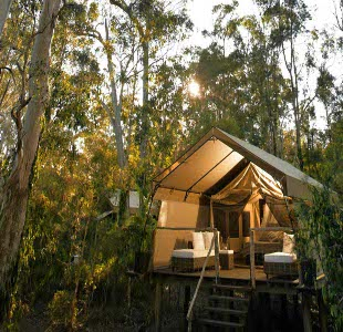 Go glamping in Autumn