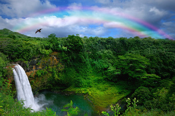 Beautiful Kauai Waterfall