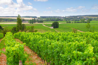 France's Loire Valley