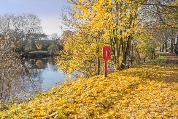 River Severn, Shropshire