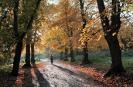 UK Park